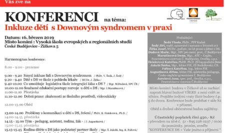 Inkluze dětí s Downovým syndromem v praxi
